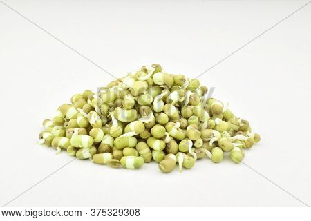 Sprouted Mung Beans On Isolated White Background, Mung Sprouts