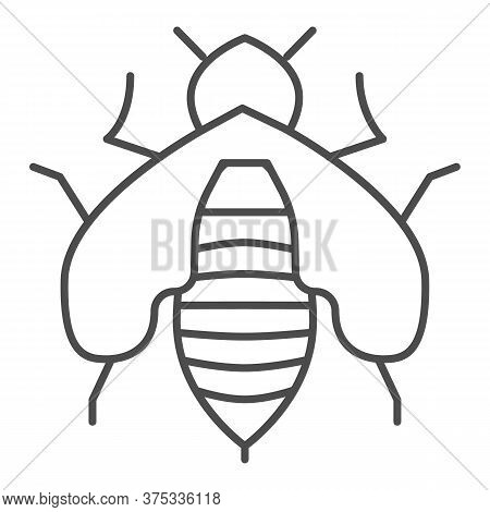 Bee Thin Line Icon, Honey Concept, Honey Bee Sign On White Background, Honeybee Icon In Outline Styl