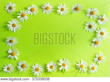 Yellow Daisies On A Green Background Are Located Around The Perimeter. Place For Text In The Center