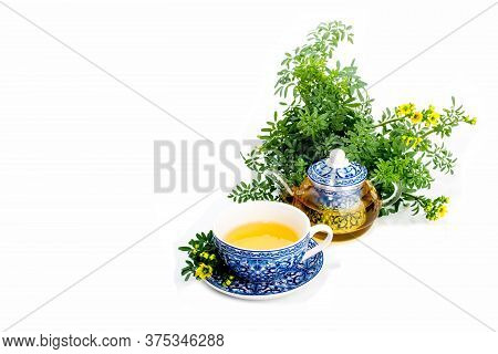 Rue Infusion ( Ruta Graveolens ) . Cup, Teapot And Rue Plant On White Background