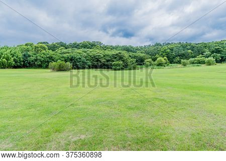 Landscape Verdant Green Lawn With Trees And Cloudy Sky In Background.