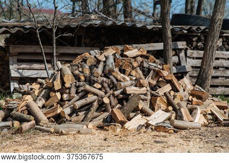 Chopped Firewood From Different Species Of Trees. Preparation Of Firewood For The Winter.