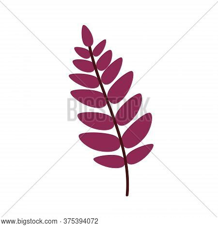 Red Leaf Of A Mountain Ash Isolated On A White Background. A Fallen Rowan Leaf. Flat Vector Illustra