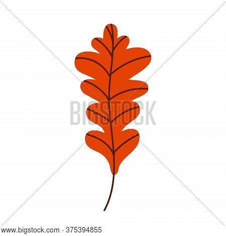 Orange Oak Leaf Isolated On A White Background. Fallen Oak Leaf. Flat Vector Illustration
