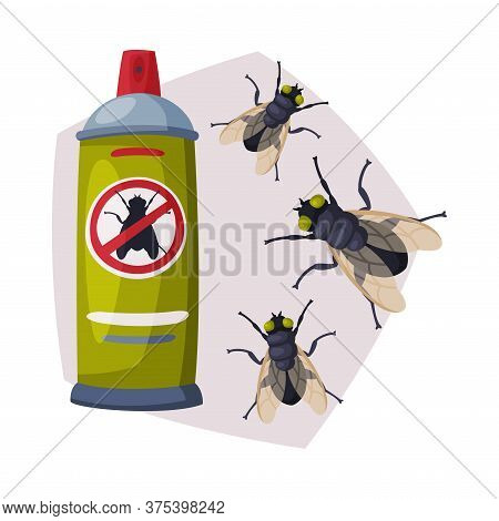 Spray Can Of Fly Insect Insecticide, Pest Control Service, Detecting And Exterminating Insects Vecto