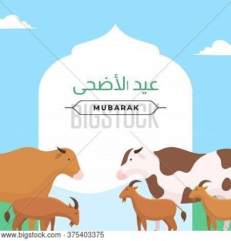 Happy Eid Al Adha The Sacrifice Of Sheep, Goat, Cow, Camel Livestock Animal. Muslim Qurban Holiday P