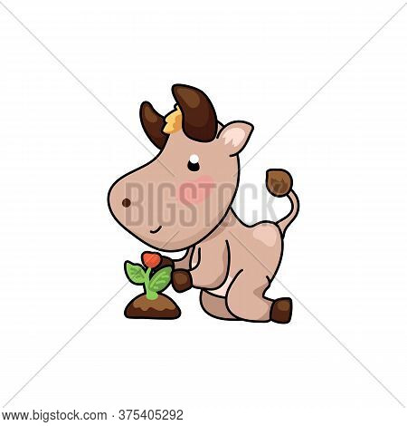 Cute Ox Cartoon Character Growing Flower Plant. 2021 Year Lunar Zodiac Animal. Chinese New Year Of O