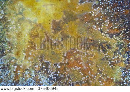 Brown Rust Usually Occurs In Areas With High Water And Oxygen
