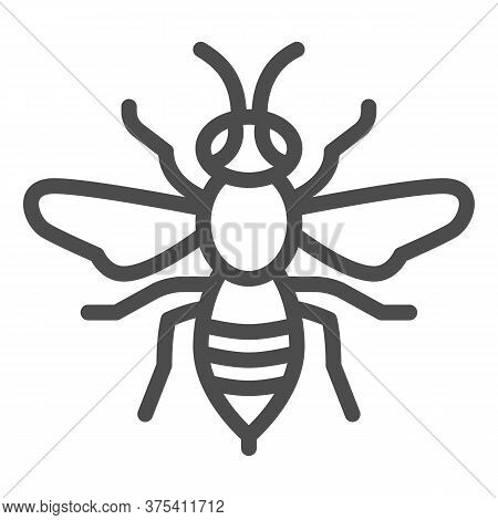Wasp Line Icon, Insects Concept, Bee Sign On White Background, Wasp Insect Icon In Outline Style For