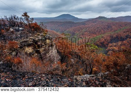 Landscape Views After Bush Fires Destroyed Bush Land In Blue Mountains.  Vistas Of Mountains And Val