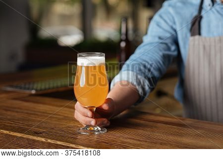 Art Of Brewing. Barman In Apron Put On Wooden Table Glass Of Light Lager With Foam In Interior Of Pu