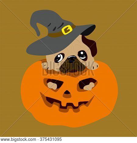 Cute Beige Pug Puppy In A Hat Sits In An Orange Halloween Pumpkin. Vector Illustration Of A Happy Ha