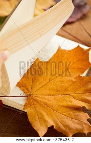 A book and a maple leaf