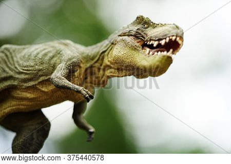 Tyrannosaurus Rex Dinosaurs Toy On Stone Nature Background.