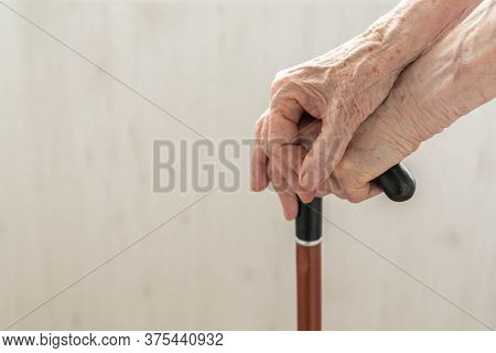 Elderly Hands Resting On Stick. Close Up Hands Of Old Woman Holding Walking Stick. Hands Of Woman Pe