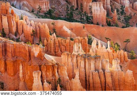 Bryce Canyon Hoodoos In The First Rays Of Sun, Utah, Usa