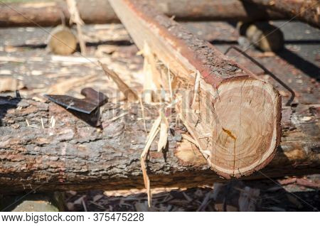 Traditional Craft And Ax, Carpenter Wood Beams, Truss