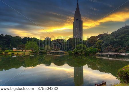 TOKYO, JAPAN - NOVEMBER 14, 2016: Autumnal scenery of the Shinjuku Park in Tokyo at sunset, Japan. Tokyo Metropolis is both the capital and most populous city of Japan.