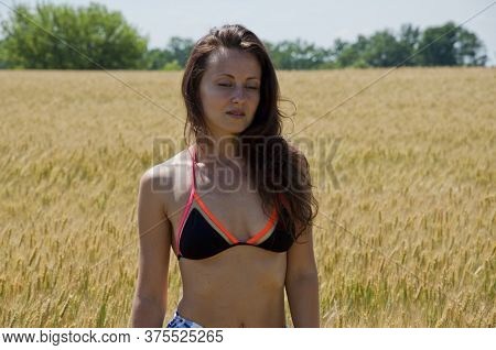 Tender Woman With Long Hair In Field. Sexy Girl In Swimsuit In Valley. Whet Or Rye Harvest. Summer V