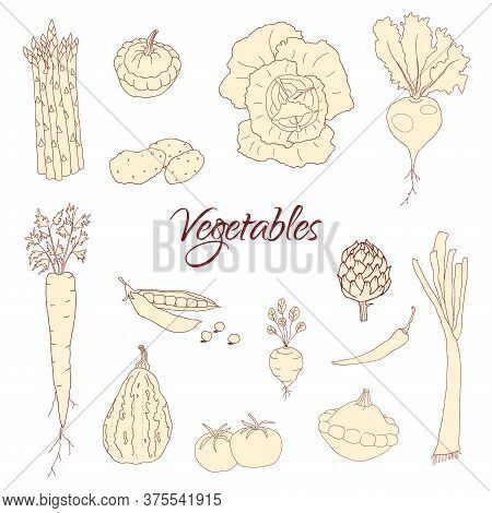Hand Drawn Doodle Vegetables Icons Isolated Set. Vector Illustration. Fresh Organic Eco Food, Vegan