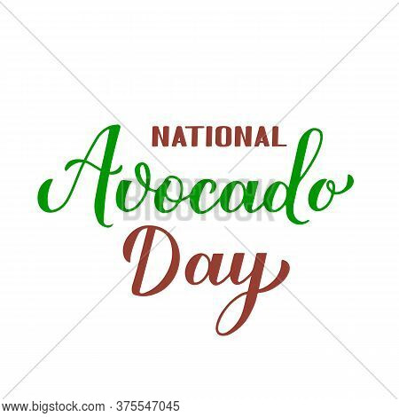 National Avocado Day Calligraphy Hand Lettering Isolated On White. Funny American Holiday Celebrate