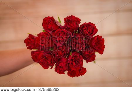 Women Hand Holding A Bouquet Of Hearts Garden Roses Variety, Studio Shot, Red Flowers