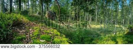 Panorama Of Celtic Fairground In The Summer In The Blockheide Nature Park In Gmünd In The Waldvierte