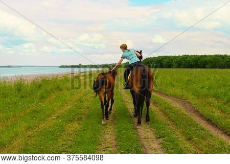 One Caucasian Horsewoman Is Sitting In The Saddle And Holding The Neck Of The Foal With Her Hand, Th