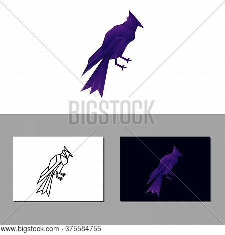Bird Colorful Vector Design Template Illustration