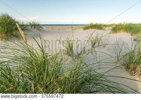 Beach With Sand Dunes And Marram Grass In Soft Sunrise Sunset Light. Skagen Nordstrand, Denmark. Ska