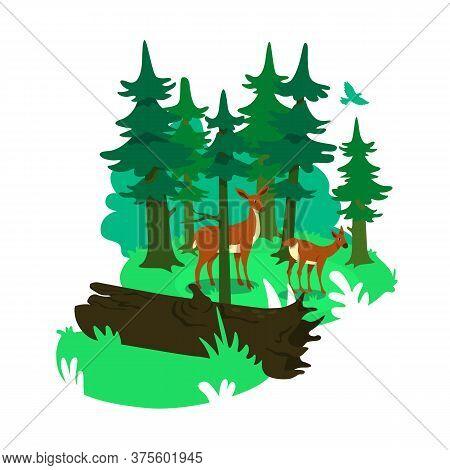 National Park 2d Vector Web Banner, Poster. Natural Habitat For Deers. Wild Animal Conservation Flat