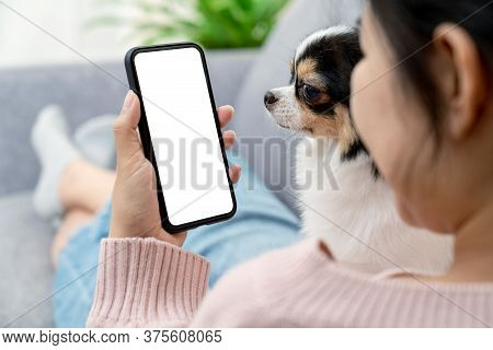 Close Up Back Rear View Of Young Asian Female With Pet Hold Phone On White Blank Screen For Montage