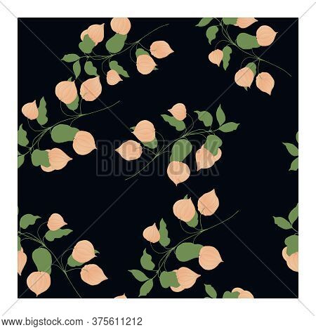 Seamless Pattern With Light Pink Physalis Flowers On Branches With Green Leaves And A Black Backgrou