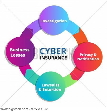 Cyber Insurance Investigation Privacy Notification Lawsuits Extortion Business Losses Infographics W