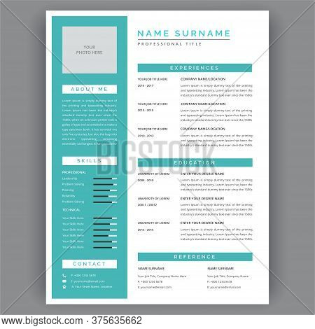 Professional Cv Templates. Resume With Vitae And Curriculum Vitae Template Business Layout Job Appli