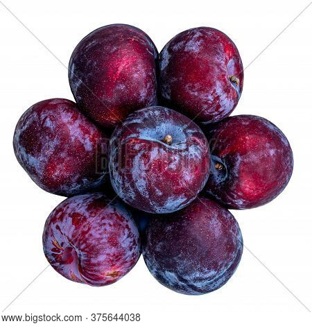 Plum Fruits Isolated On White Background. Fresh Plums Macro. Top View