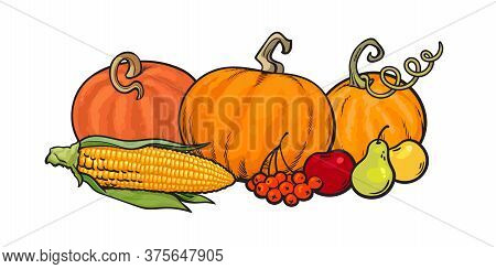 Cartoon Thanksgiving Autumn Food Pumpkins, Corn, Berries, Pear And Apples. Harvest Festival Greeting