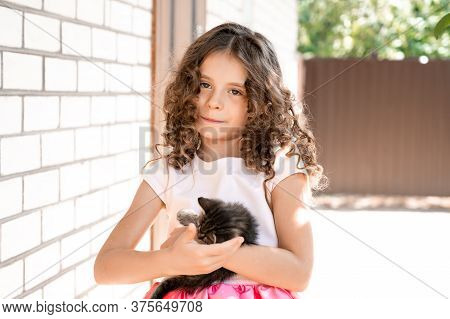 Beautiful Little Girl With Curls Holds A Kitten In Her Arms