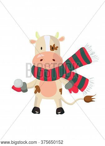 Cute Bull Wearing Scarf And Mittens And Holding A Snowball. Vector Illustration.