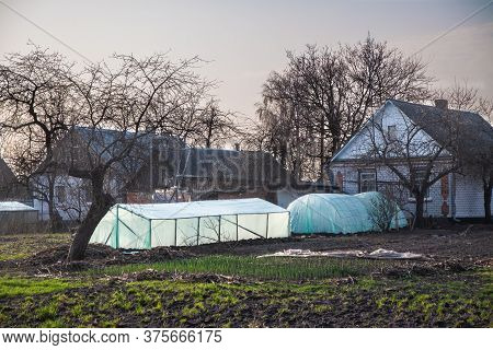 Large Greenhouse Near The House In The Village. Concept, Farming, Eco Products