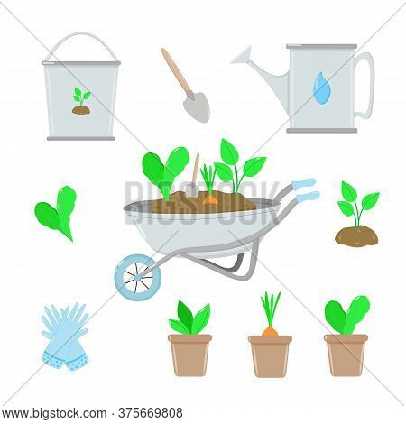 A Set Of Gardening Items. Garden Wheelbarrow, Bucket And Watering Can For Watering Plants, Plants In