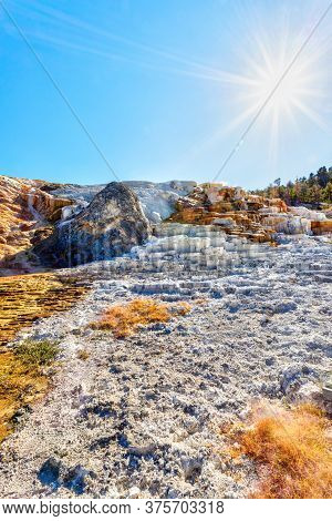 Palette Spring With Deliberate Sun Flare At Mammoth Hot Springs In Yellowstone National Park. Colorf