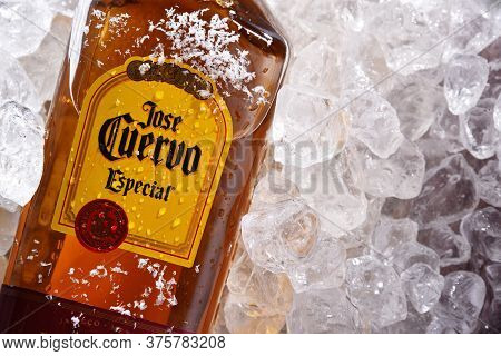 Bottle Of Tequila Jose Cuervo In Crushed Ice