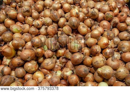 A Lot Of Yellow Onion For Sale In A Grocery Store. Fresh Onions As A Background. Vegetable Store.