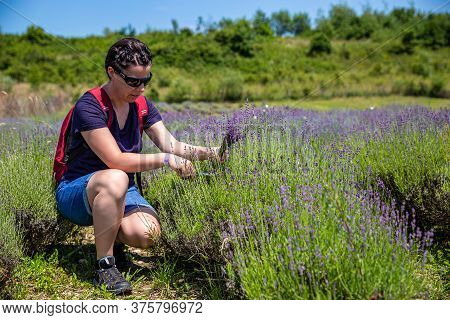 Adult Woman Picking Up A Deep Purple Lavender