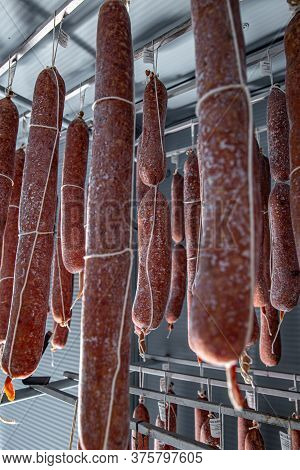 Salami In Warehouse, Using A Mold Culture To Get The Process Started Can Keep Your Meat Healthy And