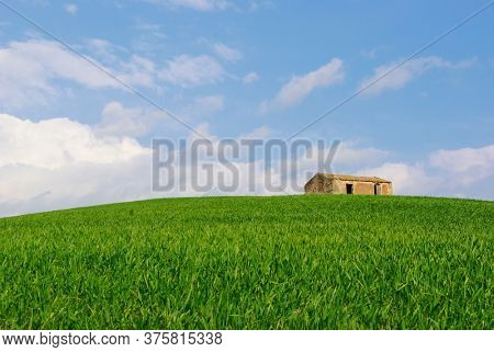 rural landscape of Sicily with abandoned building and wheat field on a verdant hill
