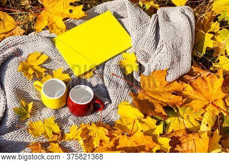 School Photo Book On The Yellow Leaves Top View. Rustick Photo Of Autumn Composition