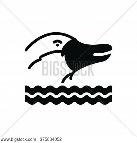 Black Solid Icon For Platypus Nocturnal Burrowing Mammal Animal