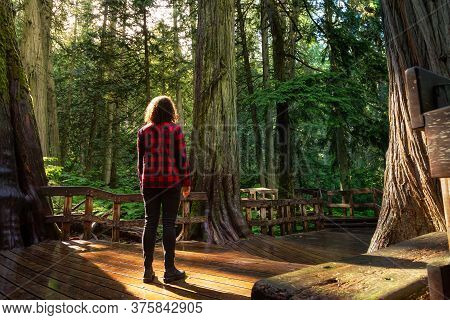 Adventure Girl Walking On A Wooden Pathway In The Rain Forest During A Vibrant Sunny Day. Taken On G
